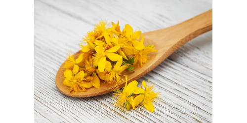 SAINT JOHN'S WORT – THE BEST NATURAL ANTI-DEPRESSANT