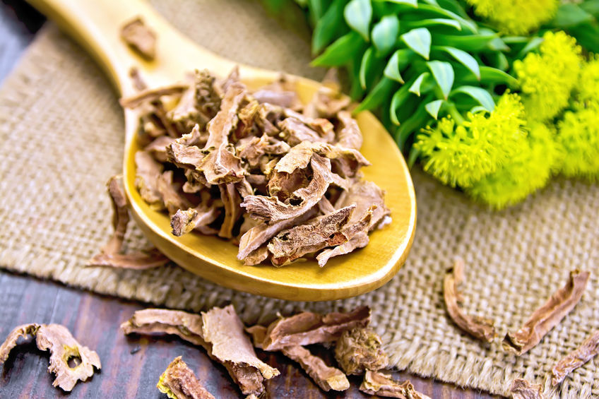 RHODIOLA – A MIRACLE HERB