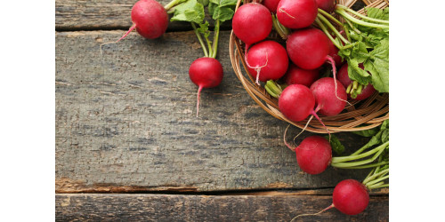 WHY IS RADISH GOOD FOR YOU?
