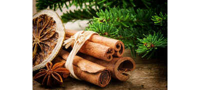 CINNAMON AND ITS BENEFITS