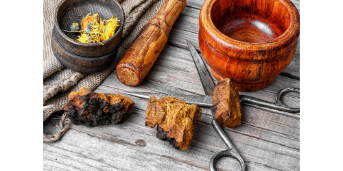 CHAGA: A GIFT FROM GOD