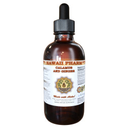 Calamus and Ginger Liquid Extract, Organic Calamus (Acorus calamus) and Organic Ginger (Zingiber officinalis) Dried Root Tincture