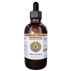 Magnolia Liquid Extract, Magnolia (Magnolia Virginiana) Dried Bark Tincture