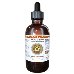 Ramulus Uncariae cum Uncis (Uncaria Rhynchophylla) Tincture, Organic Dried Stalks Liquid Extract, Gou Teng, Herbal Supplement